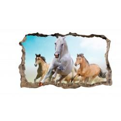 Konie No1