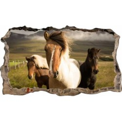 Konie No2