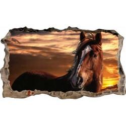 Konie No3
