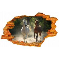 Konie No5