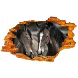 Konie No6