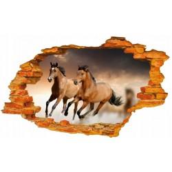 Konie XL No1