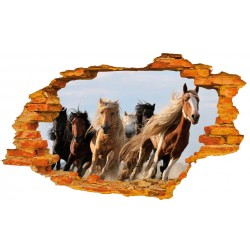 Konie XL No2
