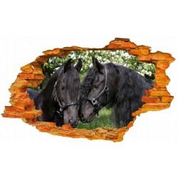 Konie No8