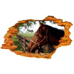 Konie No9