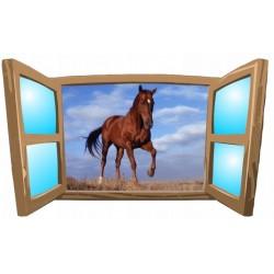 Konie No15
