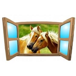 Konie No16
