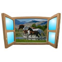 Konie No17